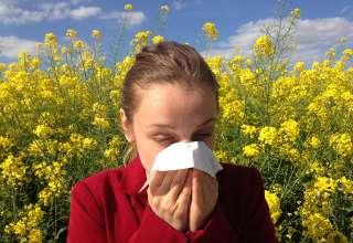 Alergik w podróży